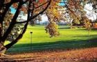 新西兰留学 2018年新西兰大学管理学专业学费多少?