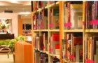 西那瓦国际大学申请条件有什么