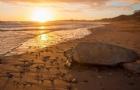"""盘点澳大利亚十大""""有趣味故事""""的海滩"""