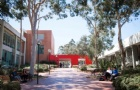 澳洲西悉尼大学教育专业排名高,还有实习
