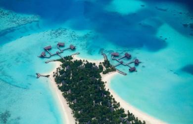 马尔代夫义工项目