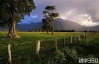 新西兰长期短缺行业:林肯大学园艺专业详解