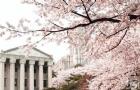 2017年韩国留学的本科申请条件
