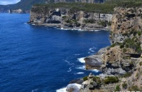澳洲留学新兴专业有哪些