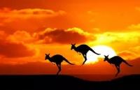 在澳洲生活二十年,我为什么仍保留着中国国籍