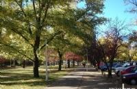 qs世界大学排名,澳洲国立大学正式晋升世界前20名