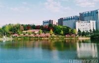 庆熙大学研究生奖学金如何申请?