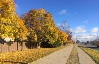 加拿大温哥华岛大学费用介绍