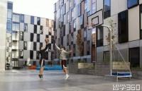 新西兰大学毕业生就业竞争能力上升,奥克兰大学挺进前100名