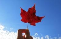 成功案例:恭喜李同学成功跨专业申请加拿大硕士!