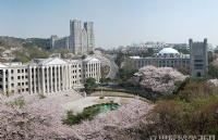 西江大学留学费用