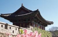 韩国留学带什么东西?