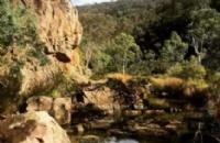 澳洲阿德莱德春色何处寻!让春风美景驱赶你的阴霾