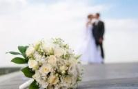 澳洲同性婚姻投票结果出炉!对同性配偶签会有哪些影响?