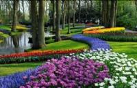 荷兰留学优势专业介绍