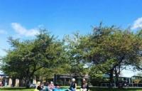 新手上路新西兰留学的优势及申请条件你要知道!