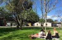 新西兰梅西大学排名及申请难度解析