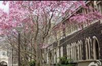新西兰留学:解析奥塔哥大学排名及申请难度