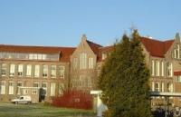 荷兰学院开设专业介绍