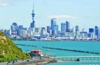 新西兰最容易移民的职业,钱多活少然而真相却是……
