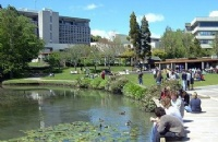 2018年读怀卡托大学与奥克兰国际学院哪个好