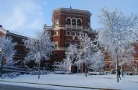 2018瑞典乌普萨拉大学的排名