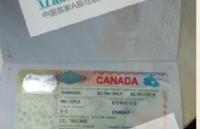 成功案例:巧降拒签风险,国内护士成功获加拿大护理学专业录取!