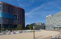 放弃国内本科去阿姆斯特丹自由大学留学落差会不会很大?