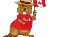加拿大陪读签证申请