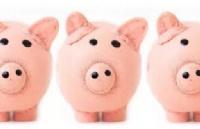 新西兰留学费用:2018新西兰留学担保费用