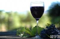 新西兰留学   东部理工学院学士后文凭-葡萄酒酿制