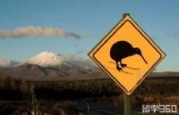 不到5000纽币就有机会移民新西兰?注意:你必须满足这些条件