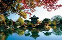 申请留学韩国名校,这些条件你有吗?