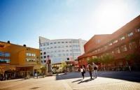 瑞典延雪平大学的排名怎么样