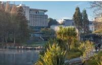 新西兰留学受欢迎的前十名专业在这里!