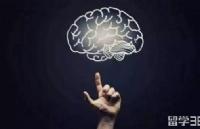 2018年惠灵顿维多利亚大学热门专业心理学介绍
