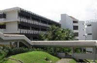 新加坡国立大学文学研究