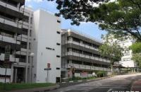 新加坡国立大学商业分析