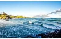 新西兰高考后快速留学,哪种方案最适合你?