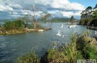 新西兰留学:新西兰硕士奖学金怎么申请