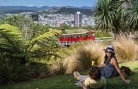 新西兰留学:是否需要提供雅思成绩来满足语言要求