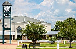 阿肯色东北学院