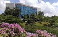 南洋理工大学国际政治经济