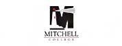 米切尔学院