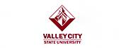瓦利市州立大学