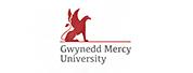 格威内思梅西大学