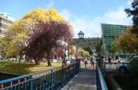 2018年留学奥塔哥大学申请材料需要哪些