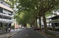 新西兰留学:奥克兰大学与清华排名情况介绍