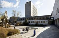 挪威商学院有哪些专业选择