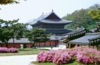韩国的名牌大学